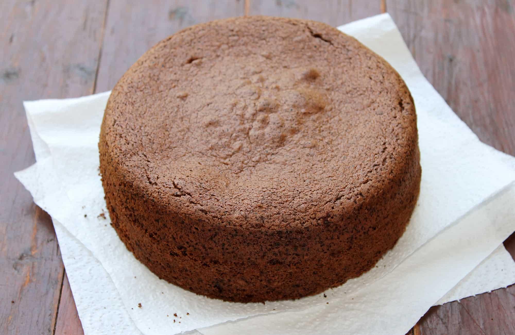 Chocolate-Sponge-Cake