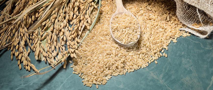 Whole-Rice-Grains