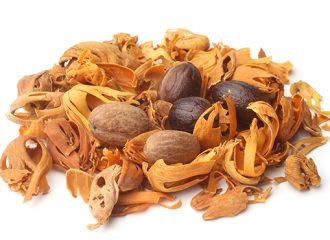 Nutmeg-and-Mace